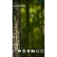 Galaxy S3 I9300