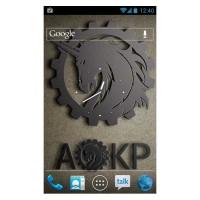 Galaxy S3 I9300 AOKP