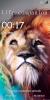 [ROM][MT6572] Samsung Galaxy S5 4 Canvas JUICE[SACHIN] - Image 6