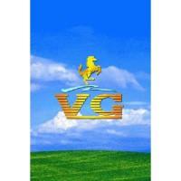 VG V413