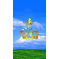 VG V614(3G)