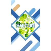 Shoumi T1