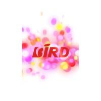 BIRD COOMI fot8