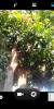 SYMPHONY_P6_For_I-MOBILE_IQBIG - Image 6