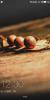 LeWa OS 6.5 (E4-Lite) - Image 7
