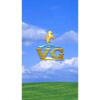 VG V686 MT6580