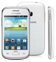 Samsung Galaxy Young Plus GT-S6293T