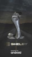 Shelby ZA555