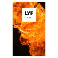 LYF LS-4006