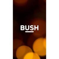 Bush Spira C2 5″ Smartphone