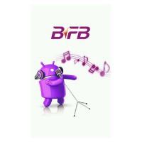 BFB W9260