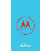Moto G Stylus XT2043-7 OPENMX